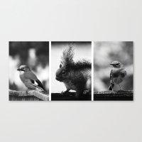 wildlife Canvas Prints featuring Wildlife by Anne Staub