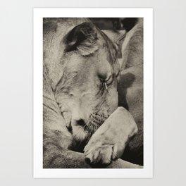 Dreamtime Art Print