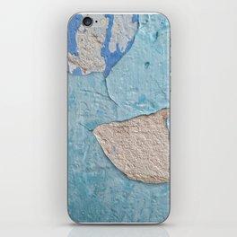 011 iPhone Skin