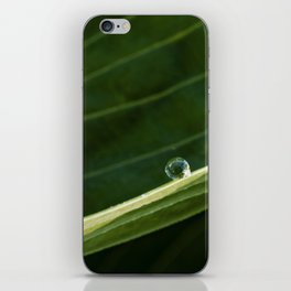 green iPhone Skin