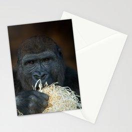 Gorilla Stare Stationery Cards