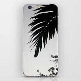 Florida Palms iPhone Skin