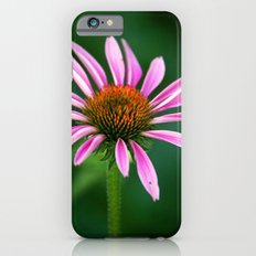 Pink Cone Flower Slim Case iPhone 6s