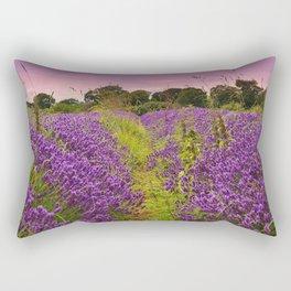 A Norfolk Lavender Field, UK  (Lavandula) Rectangular Pillow