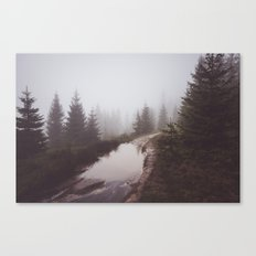 Misty trail Canvas Print