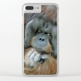 The Orangutan Clear iPhone Case