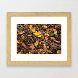Log & Fall Leaves Framed Art Print