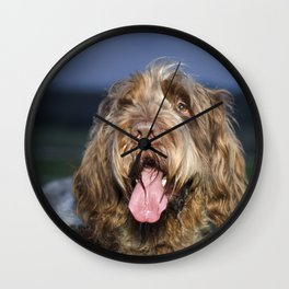 Brown Roan Italian Spinone Dog Head Shot Wall Clock