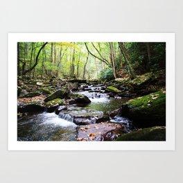 Virginia Hike Art Print