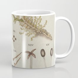Moss And Hornwort Botany Coffee Mug