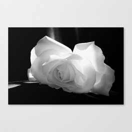 Black & White Rose Canvas Print