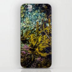 rockpool iPhone & iPod Skin