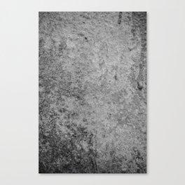 Concrete 1 Canvas Print