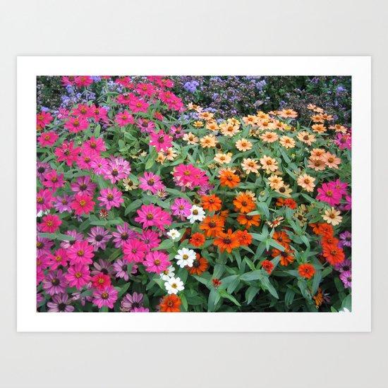 gardens 009 Art Print