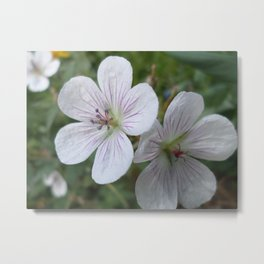 Flowers On The Mountain Metal Print