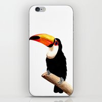 toucan iPhone & iPod Skins featuring Toucan by Bridget Davidson