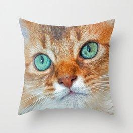 EYE CAT-CHING Throw Pillow