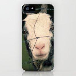 The Goat II iPhone Case