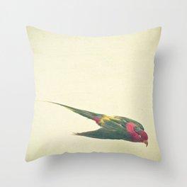 Bird Study #4 Throw Pillow