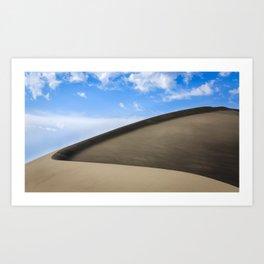 Bruneau Dunes Art Print