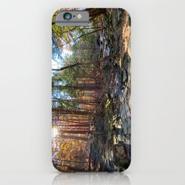 Vaughan Woods Foliage (3) iPhone Case