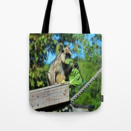 Mysterious Lady II Tote Bag