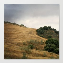 Field and sky, Spain Canvas Print