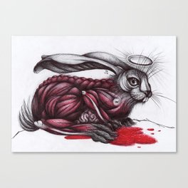 St. Skin Hare. Canvas Print