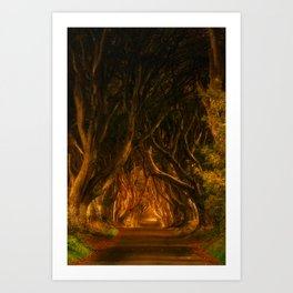 Dark Hedges Art Print