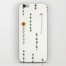 Field of Flowers iPhone Skin