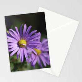 Lovely lavender aster Stationery Cards