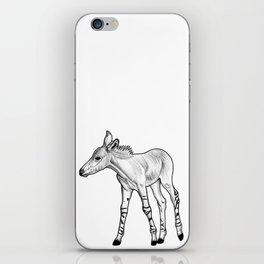 Somali Wild Ass foal - ink illustration iPhone Skin