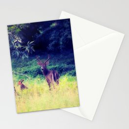 Morning in the Meadow Stationery Cards