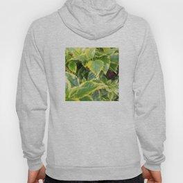 Leaves Hoody