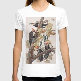 John James Audubon -Woodpecker T-shirt