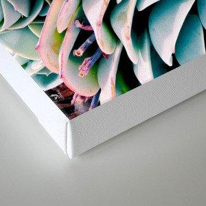 Pastel Paradise Canvas Print
