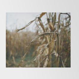 Autumn Cornstalk II Throw Blanket