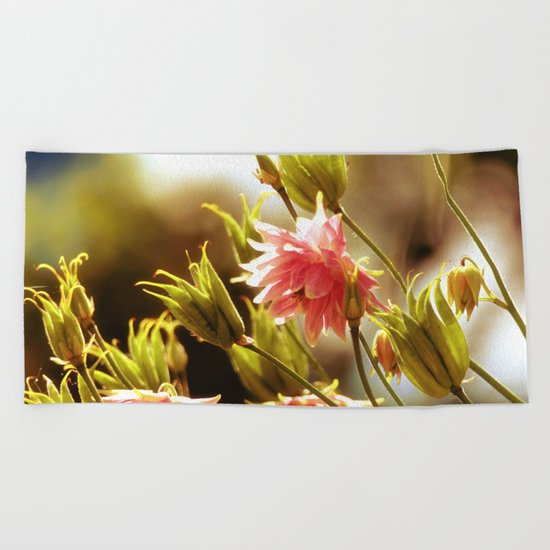 Wild beauty, flowers in the meadows Beach Towel
