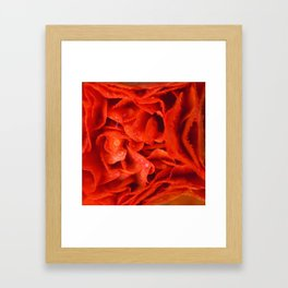 April showers in orange Framed Art Print