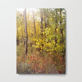 You Can Just Hear the Breeze Through the Trees  Metal Print