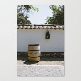 Santa Rita Chile Canvas Print