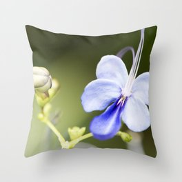 Blue Glory Bower from Bud to Bloom Throw Pillow