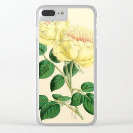 Andrews, James (1801-1876) - The Floral Magazine 1869 - Tea Rose, Mme Margottin Clear iPhone Case