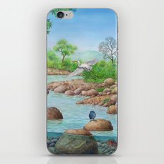 river  iPhone & iPod Skin