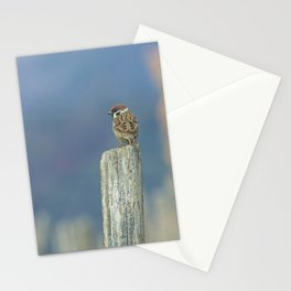 Passerotto-young sparrow Stationery Cards