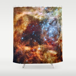Grand star-forming region R136 in Tarantula Nebula  (NASA/ESA/Hubble) Shower Curtain