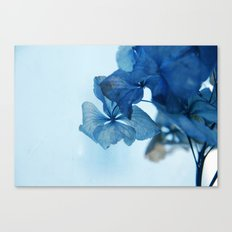 ..in my dream.. Canvas Print