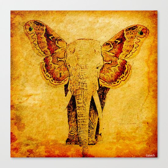 The elephant who wanted to be a butterfly Canvas Print