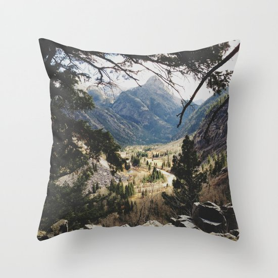 San Juan Forest Throw Pillow