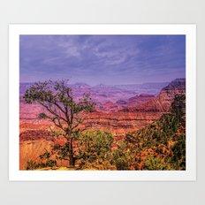 Grand Canyon, AZ, USA Art Print